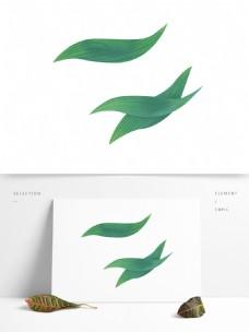 端午节绿色粽子叶