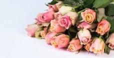 周年的纪念日约定鲜花粉玫瑰