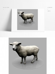 动物家禽3D模型