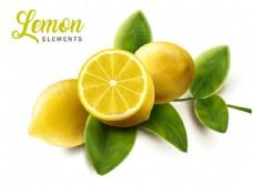 新鲜带叶柠檬设计矢量素材