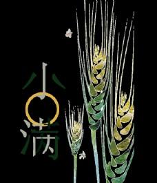 大麦手绘插画
