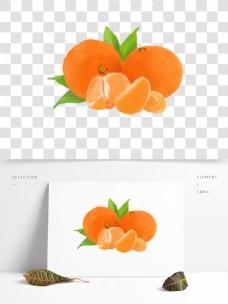 手绘水果实物橘子