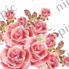 矢量玫瑰花素材