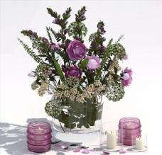 精品室内盆栽花卉模型