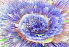 紫色背景花纹