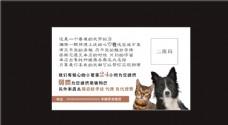 宠物名片 贴纸 海报