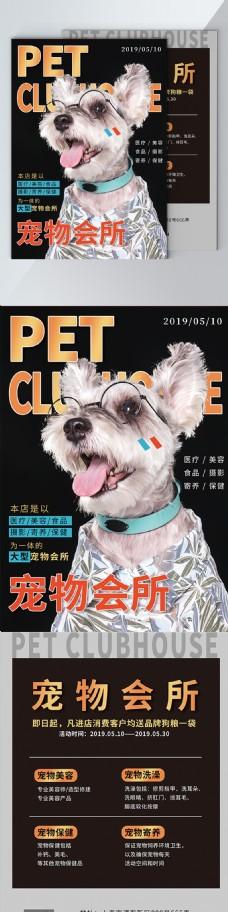 可爱宠物单页杂志