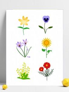 简约手绘矢量向日葵藏红花花朵叶子设计元素