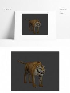 动物模型老虎带贴图