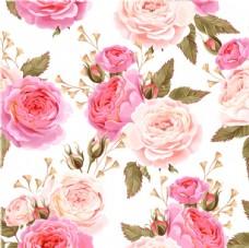 玫瑰花 底纹