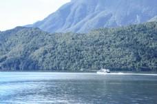 新西兰南岛神奇峡湾自然风光