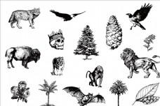 黑白矢量野生动物素描图案