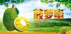 菠萝蜜宣传海报
