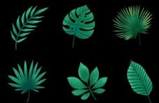 手绘卡通植物叶子