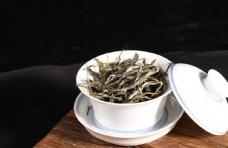 普洱茶散茶春茶
