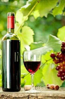 绿叶 红酒