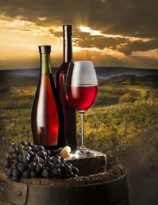 红酒 葡萄园 高清喷绘