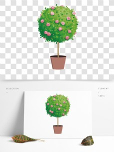 绿色盆栽植物花朵