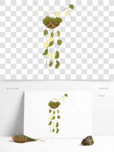 清新手绘花卉植物盆栽素材