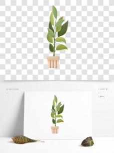 花盆植物叶子盆栽素材