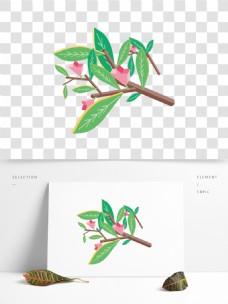 小清新植物树枝装饰