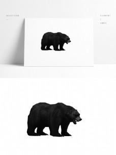 动物模型狗熊带贴图