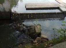 小溪流水潺潺