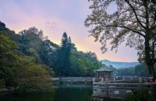 罗浮山白莲湖湖心亭