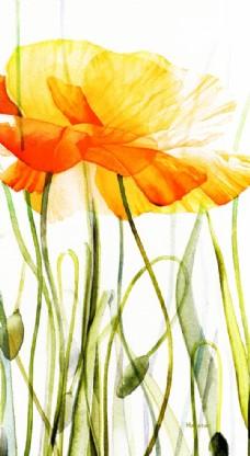 花中华尔兹 - 罂粟