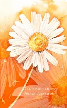 爱是一朵花