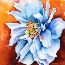 喜马拉雅蓝花朵