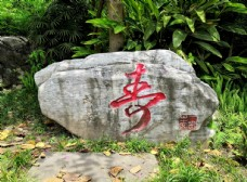 石刻寿文化
