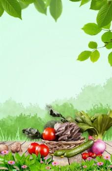 绿色蔬果背景