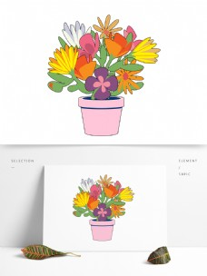三色堇波斯菊盆花