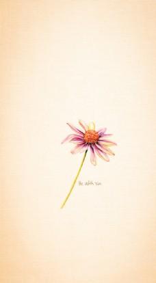 与你同在的野菊花