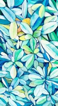 像花一样缤纷的叶子