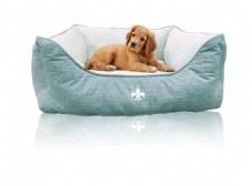 淡蓝色狗床