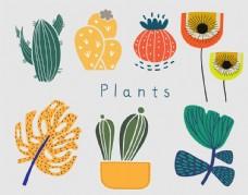 植物手绘汇总