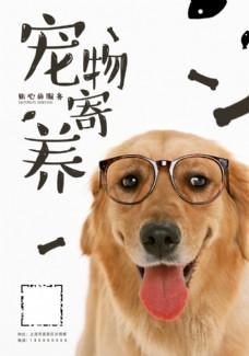 宠物寄养海报