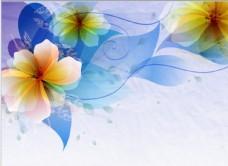 飘逸的花朵背景图