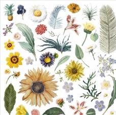 花朵背景图案