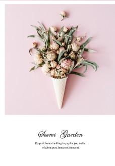 玫瑰月季花