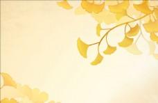 黄色花朵植物