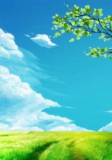 蓝天下的草地风景