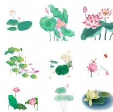 水墨荷花夏季植物元素