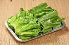 油麦菜 火锅配菜