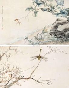 花鸟画 花卉 工笔画 中国画