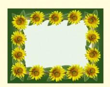 向日葵花边相框