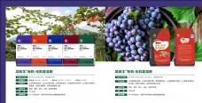 农业厂家葡萄