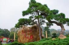 湖南毛主席铜像广场